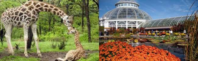 New York Bronx Zoo And Botanic Garden